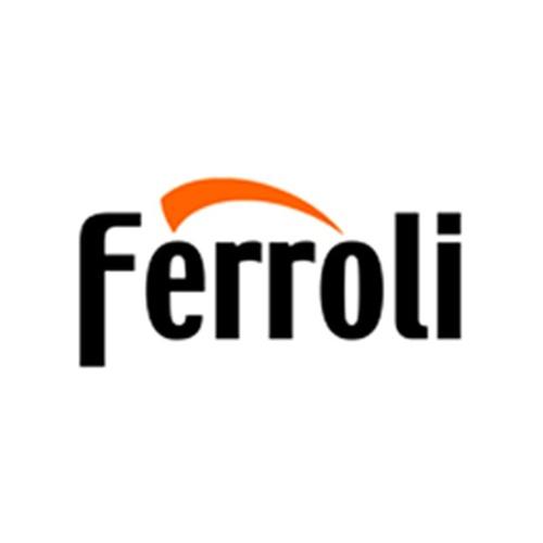 Servicio técnico oficial de Ferroli en Bilbao