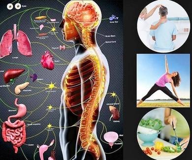 Charla: Salud y Quiropráctica (Actividad Gratuita) 21 de Noviembre de 19:30 a 20:30