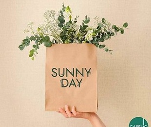 SUNNY DAY CASELIO