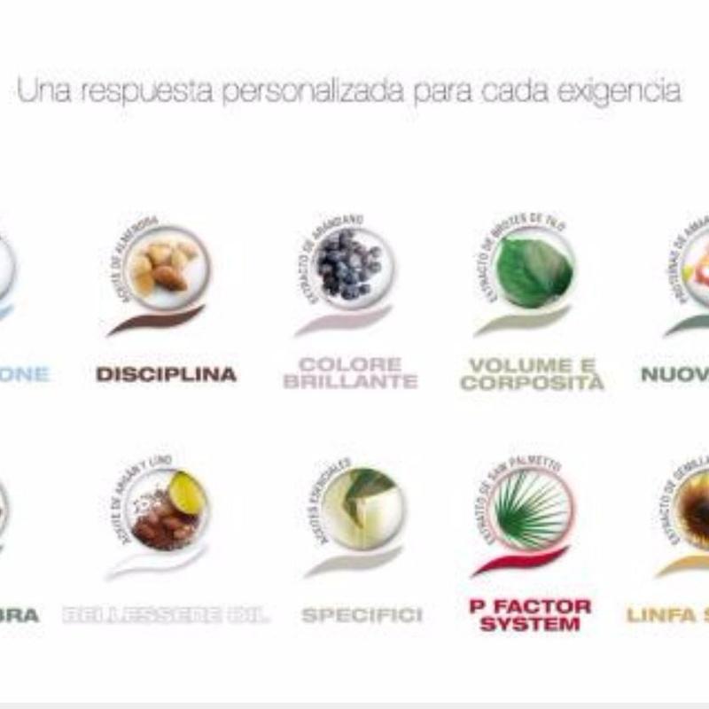 ACTYVA: Tratamientos y productos  de Milandco Peluqueros