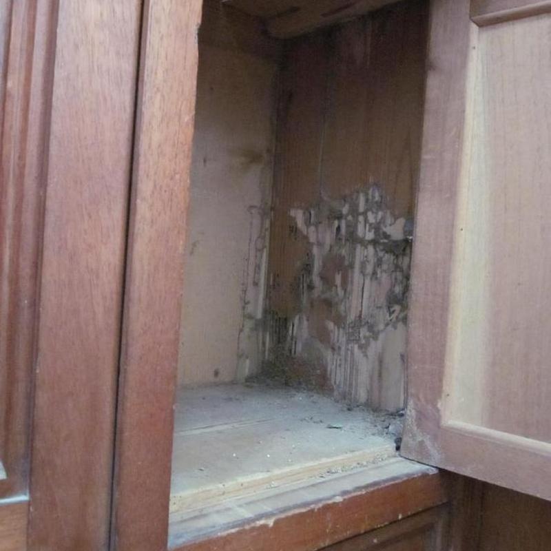 Armario con termitas