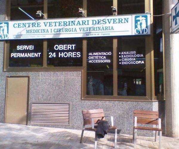 Hospital veterinario con traumatologia en España | Hospital Veterinario Desvern