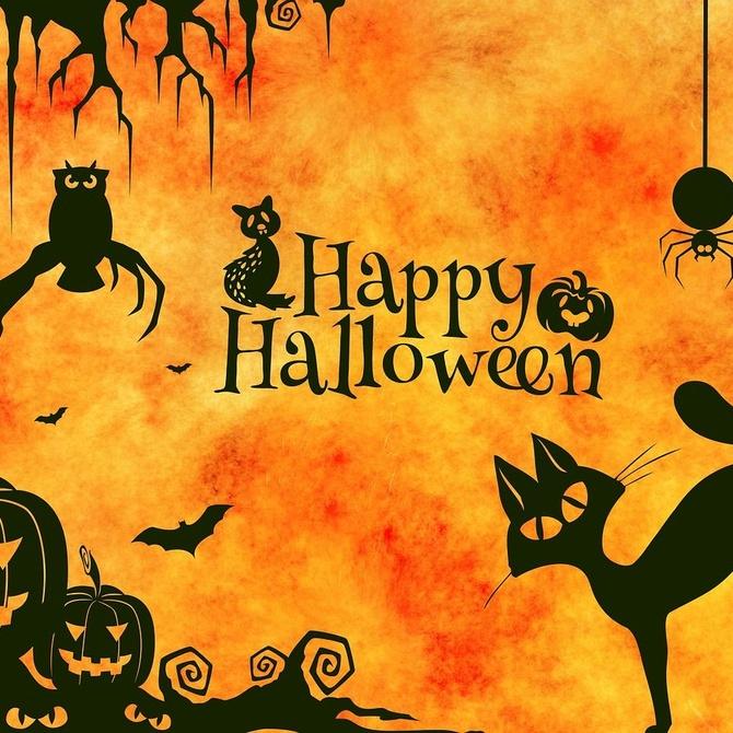 Fabrica tu propio disfraz de Halloween con cartón