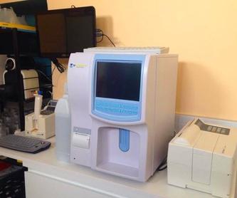 Servicio de diagnóstico por imagen: Servicios y ofertas de Clínica Veterinaria DContreras