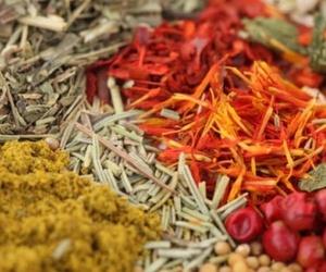 Distribución de especias de excelente calidad en Murcia