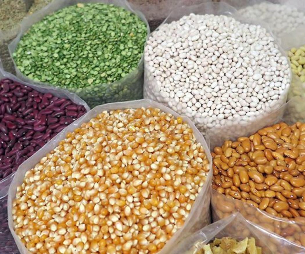Apuesta por las semillas orgánicas
