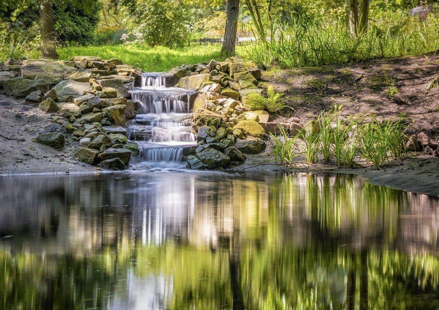 Pon un estanque en tu jardín