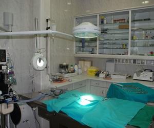 Quirófano veterinario  Mostoles http://www.veterinariosmostoles.com/es/