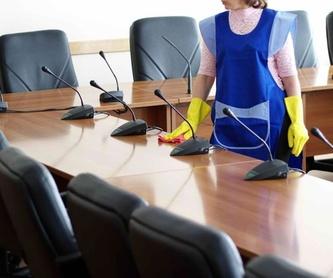 Limpieza de locales: Servicios de LIMPIEZAS GRAN MERLÍN