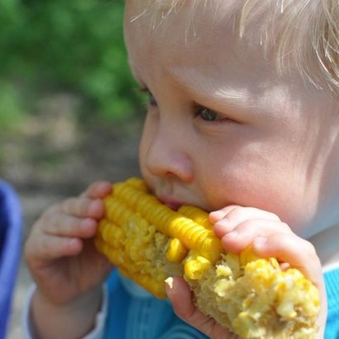 Consejos para que tus hijos coman de todo