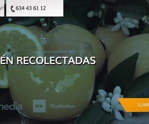 Naranjas a domicilio en Vizcaya | Naranjas Julián