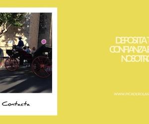 Rutas a caballo en Don Benito: Picadero Escuela Las Cruces