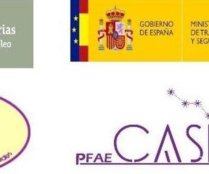 FORMACIÓN ESPECÍFICA EN INSERCIÓN LABORAL : Proyectos y Servicios de Asociación Domitila