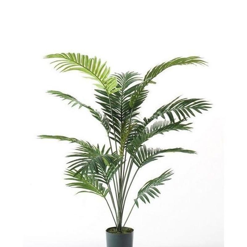 Árbol palmera Deluxe: ¿Qué hacemos? de Ches Pa, S.L.