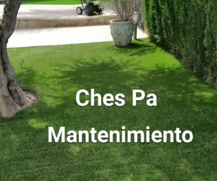 Mantenimiento césped artificial Ches Pa