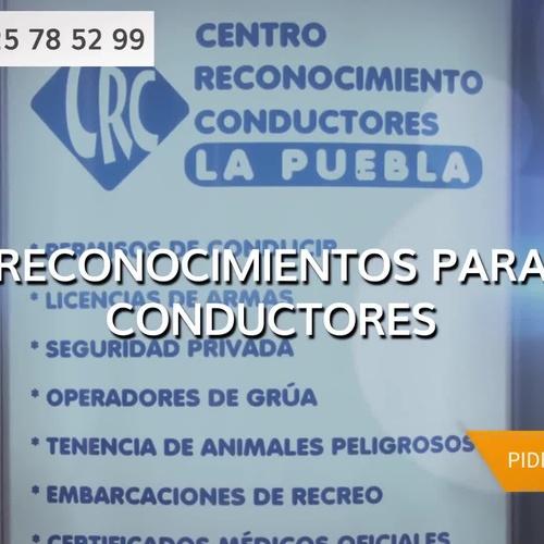 Sacar licencia de armas en Fuensalida | Reconocimiento Conductores