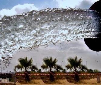 Aguas subterráneas: Servicios de Perforaciones Núñez