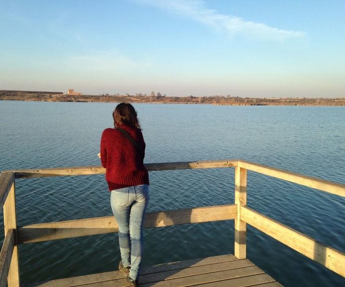 Fobia Social / Fòbia social: Tratamientos de Audet Bordoll, Mercè