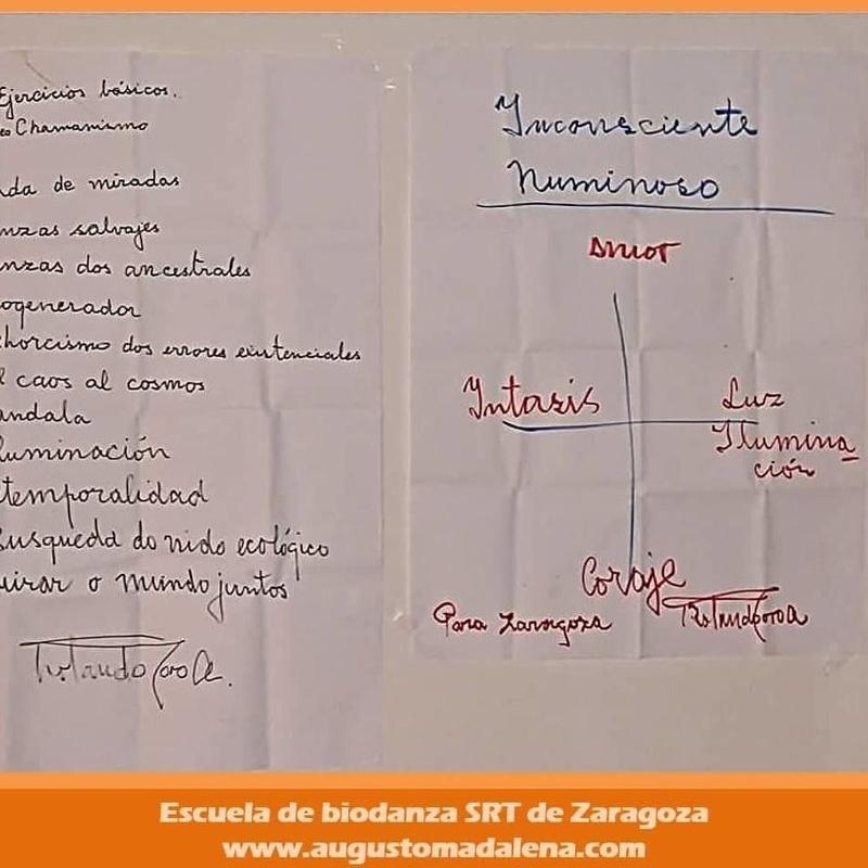 Neochamanismo en Biodanza según Rolando Toro. Con Augusto Madalena
