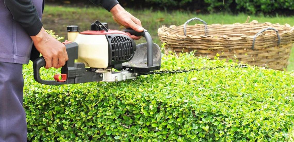 Empresa de mantenimiento de jardines en Oviedo