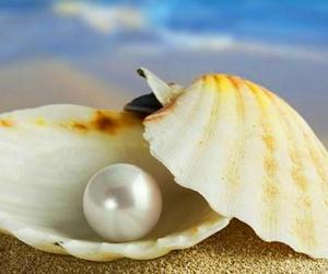 Exfoliante de gelatina de perlas y yogurt con oligoelementos