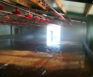 Limpieza de granjas en Zaragoza | Emprenic