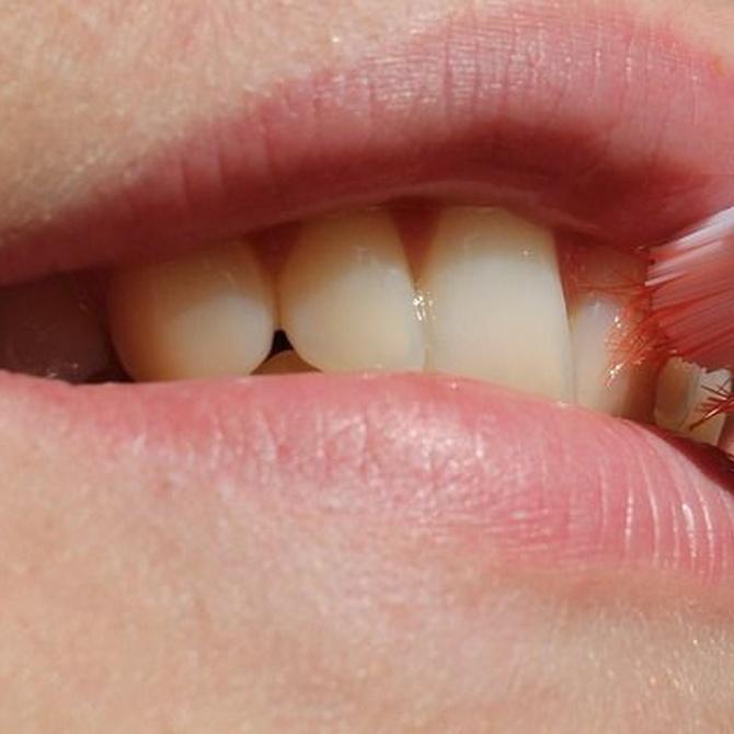 Prevenir las infecciones dentales: el tabaco y el cepillo de dientes