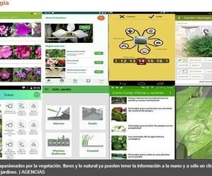 12 apps para los que aman las plantas