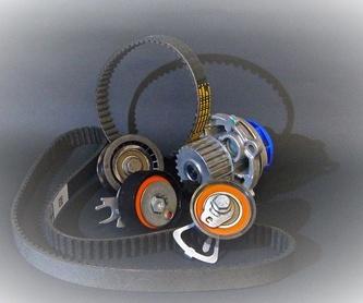 Rodamientos y retenes: Productos de Repuestos Gelu,. S.L