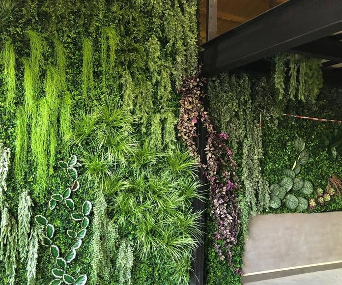 Jardin vertical en ciudad real empresa cocinas aquilice