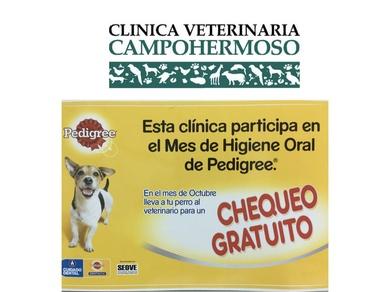 Octubre: mes de la higiene oral