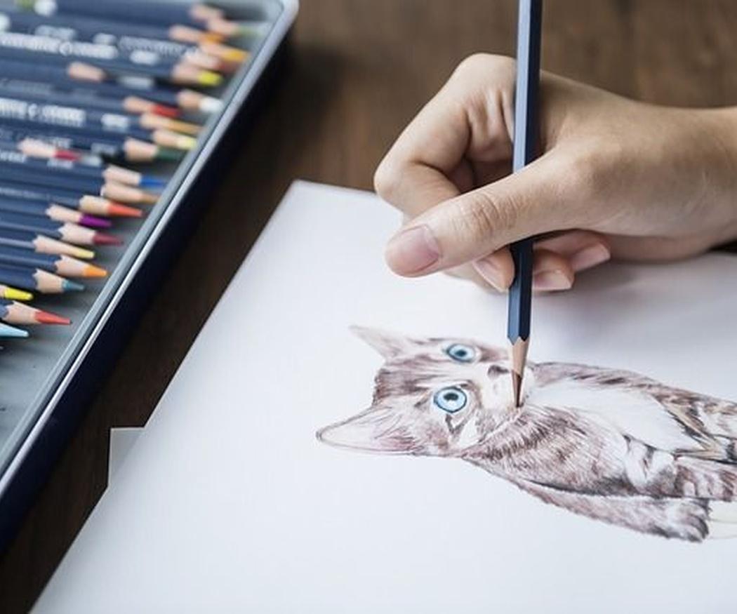 Clasificación de los tipos de dibujo