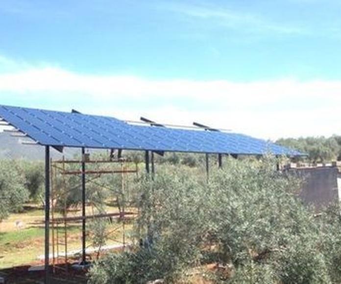 Energía fotovoltaica: Servicios de Electricidad López Medina