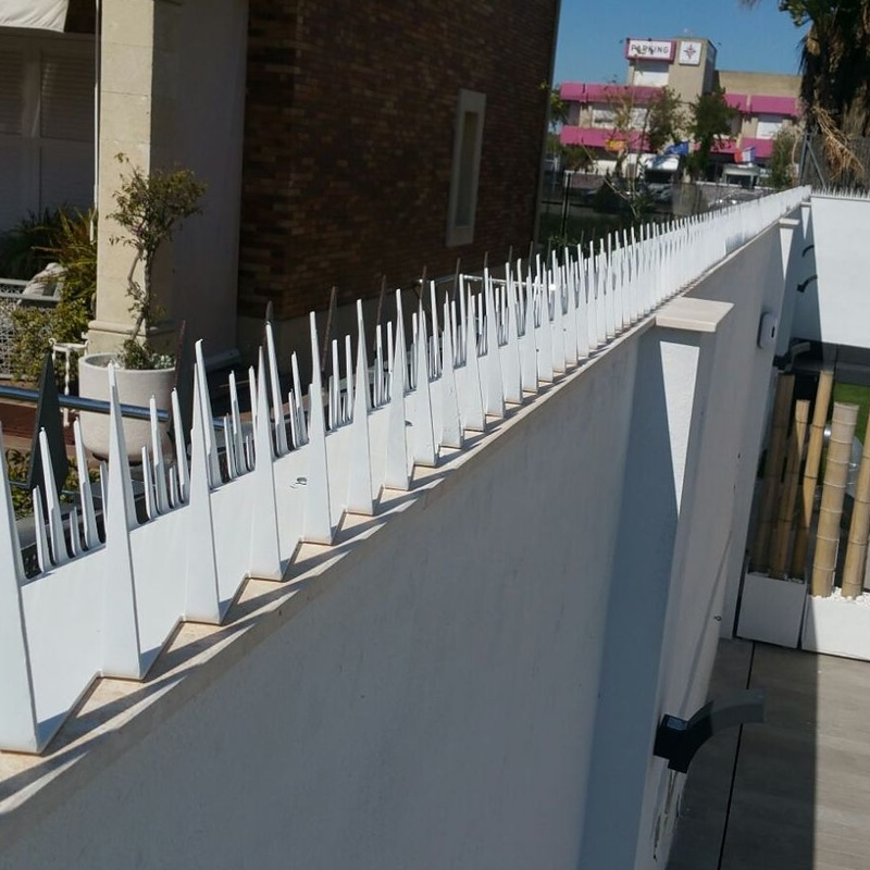 corte con plasma convencional, grabador y lector de cámara.: Nuestros servicios de Cerrajería Inox Las Salinas