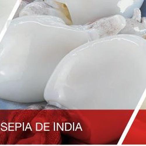 Solicita nuestra sepia de India