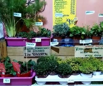 Zumos cítricos recién exprimidos: Servicios de Madrid Tropical Frutas Selectas