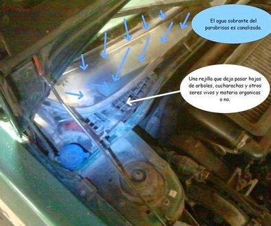Mantenga limpio el desagüe de su coche!