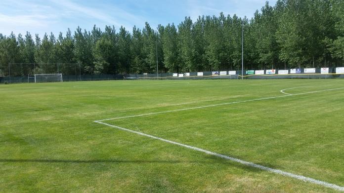 Instalación y mantenimiento de césped en espacios deportivos