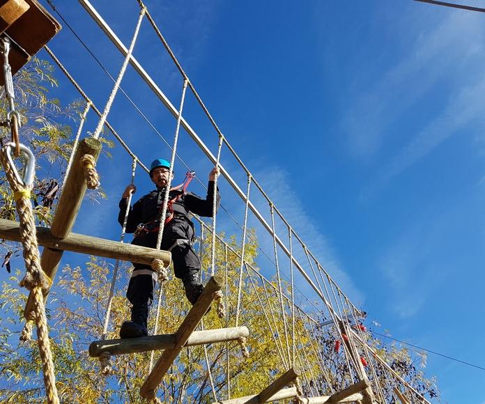 Dia 1 de Diciembre  Parque Aventura en Madrid: CALENDARIO DE ACTIVIDADES de Información