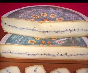 Gran variedad de quesos