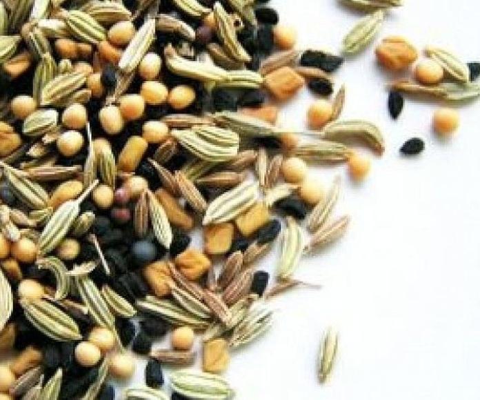 Semillas: Productos de Fitodel, S.L.