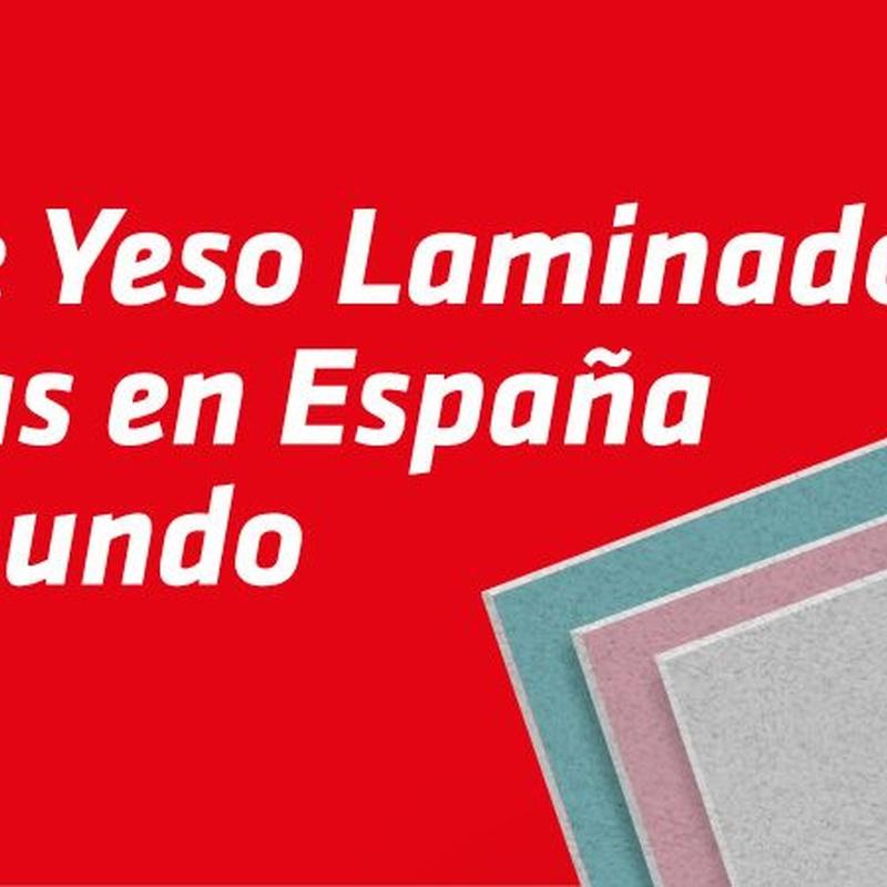 Techos desmontables laminados Escayesos: Nuestros productos de Placa Depot, S.L.