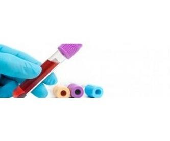 Diagnóstico por imagen : Servicios  de Clínica Veterinaria Sol y Luz