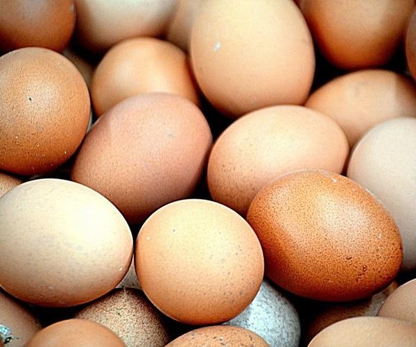 Oferta de huevos