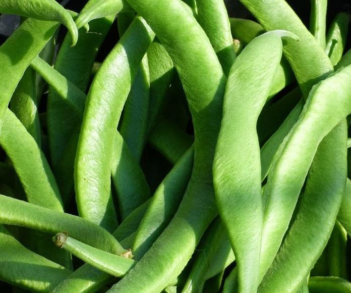 Judías verdes: Productos de La Huerta de Leo