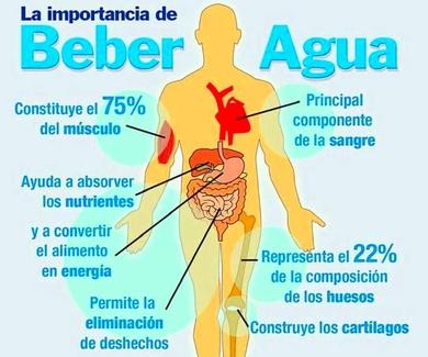 nutrición ,  ejercicio e hidratación