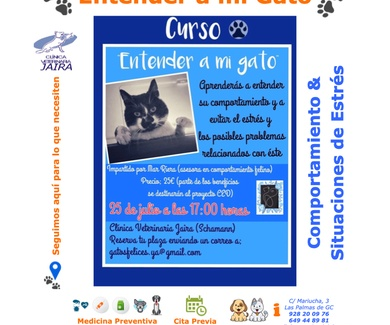 """Segunda Edición - Curso """"Entender a mi Gato"""""""