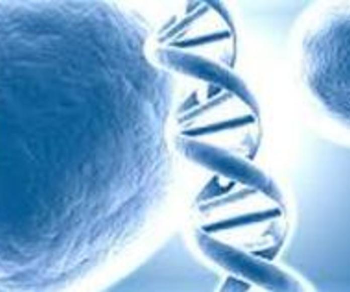Prevención y diagnóstico precoz de cánceres ginecológicos: Servicios de Ginecología y Obstetricia