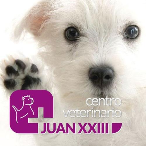 veterinarios valencia, centro veterinario juan xxiii