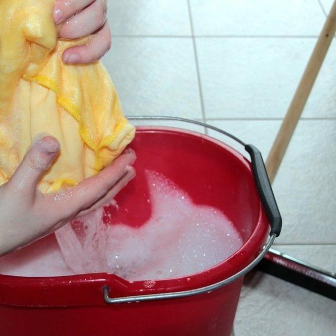 Lecciones básicas de limpieza